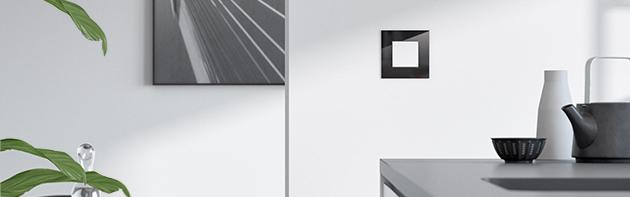 Busch-Jaeger Carat glas