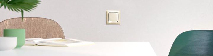 Busch-Jaeger Standaard SI Linear crème